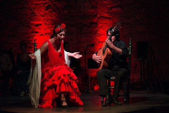 Jerez Flamenco Day Trip from Cádiz