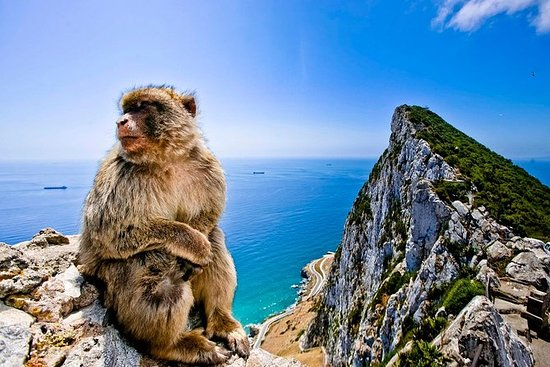 Gibraltar & Bolonia Private Day Trip...