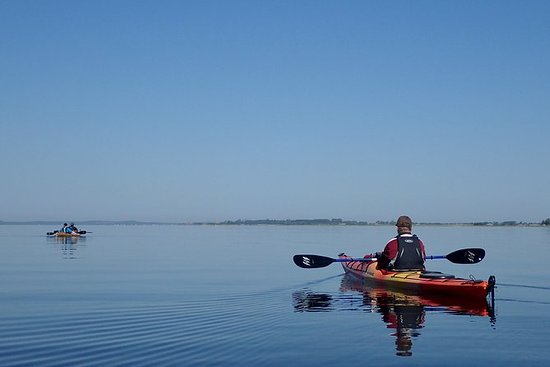 Nemunas River Delta Kayak Tour From...