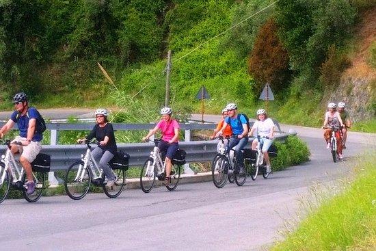 Baie del Levante E-Biking Tour from...