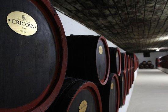 2天游览 -  Cricova Winery,Tiraspol...