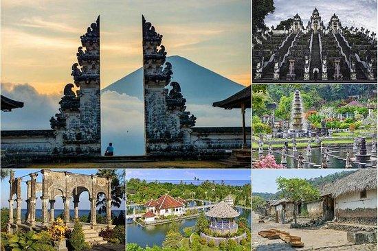 Excursão privada de dia inteiro: Bali...