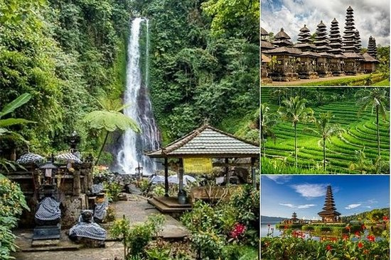 Private Full-Day Tour: Bali Natural...
