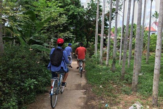 Tour in bici di un'intera giornata al