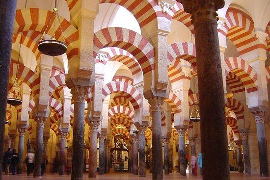 Tour privato di Cordoba da Siviglia