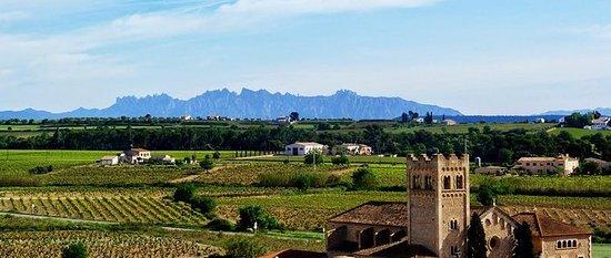 Privat Montserrat og Penedes Day Tour...