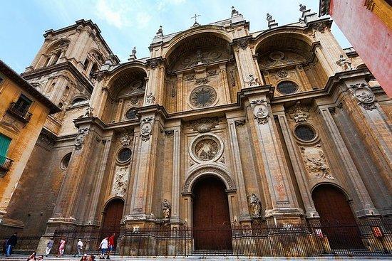 Privat guidet turtur i Granada