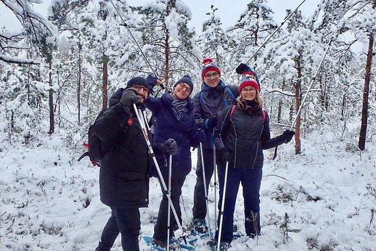 Scenic Snowshoe Hike in Trakai From...