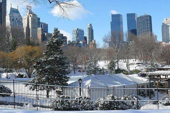 マンハッタンのクリスマス:市のホストとのプライベート体験