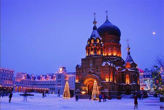 Tour privato di un giorno: Harbin