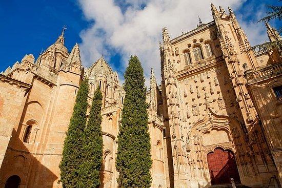 从马德里到阿维拉和萨拉曼卡的私人旅游