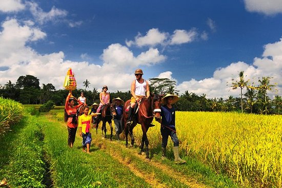 Equitazione attraverso il campo di