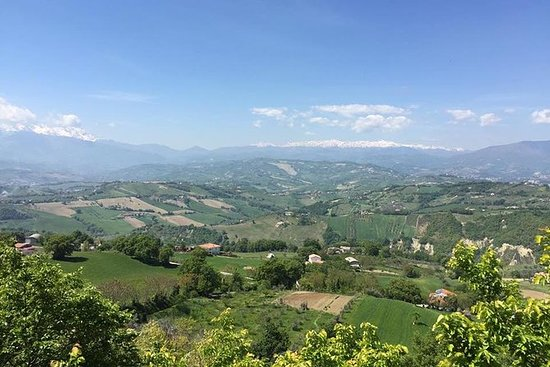 Marche and Abruzzo wine tasting tour...