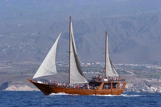Segeltag mit dem chinesischen Boot...