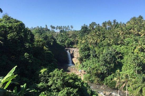 Excursão a pé pelas cachoeiras de...