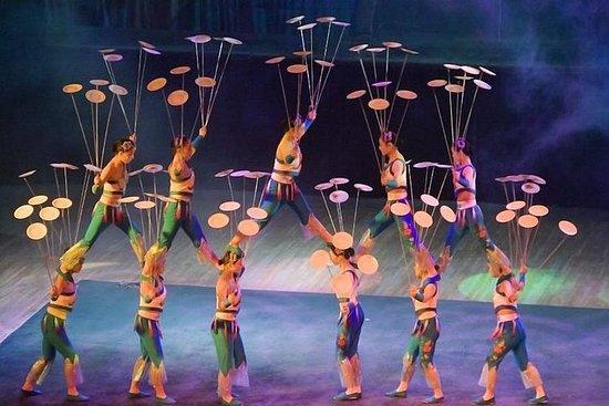 Beijing Night Tour Of Acrobatics Show Including Private Transfer 사진