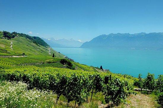 Private Tour durch die Schweizer...