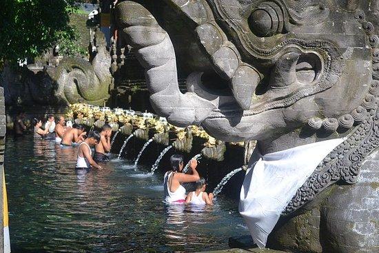 Bali Traditional Tours