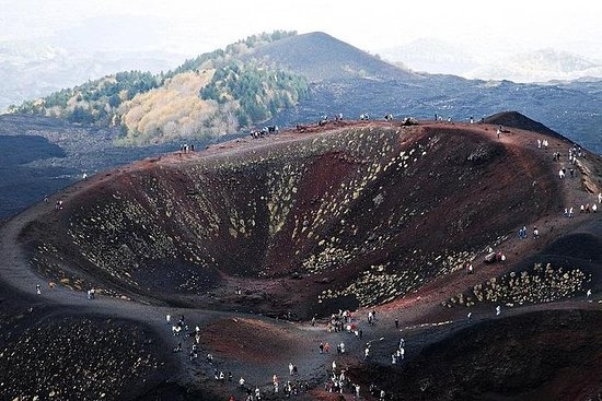 Private tour from Messina: Etna...