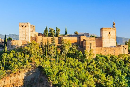 Alhambra and Generalife Private Guided Tour with optional Nasrid Palaces: Alhambra and Generalife Private Guided Tour