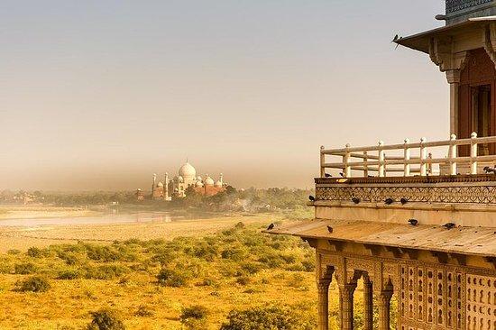 Excursão privada de Agra e Tajmahal de...