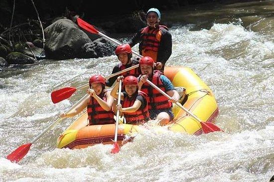Forfait Ayung Rafting et Ubud Tours