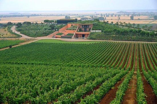 Tour du vin de luxe Maremma