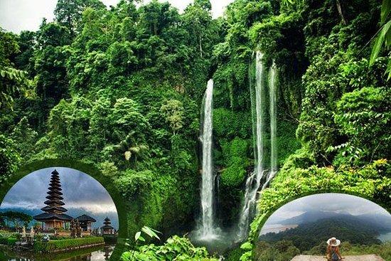 Tour privato Sekumpul Waterfall
