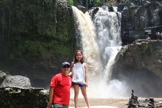 Bali Private Tour Ubud and Kintamani...