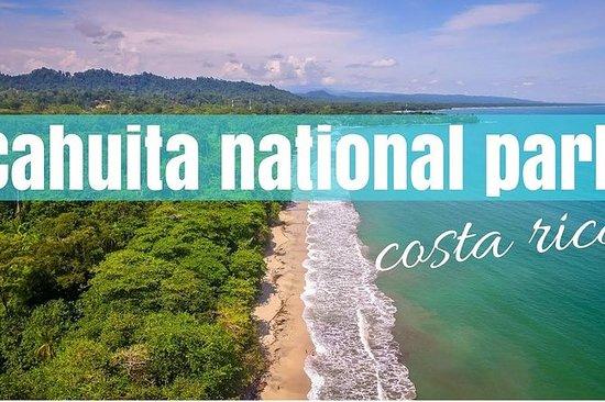 从圣何塞到卡维塔国家公园(加勒比海岸)的一日游