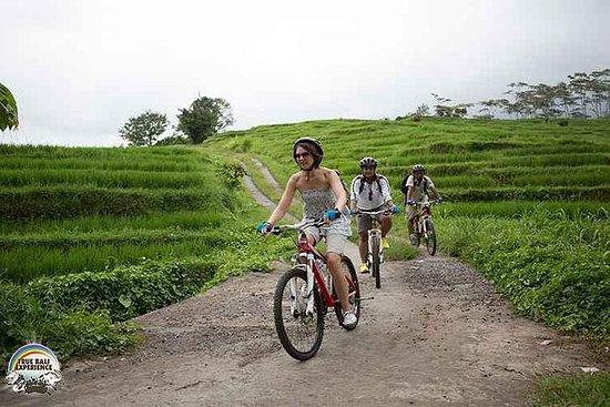 バリヴィレッジバイクサイクリングツアー