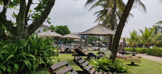 Pool View. Beach View.