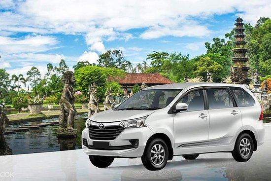 Dia completo Bali carro charter com...