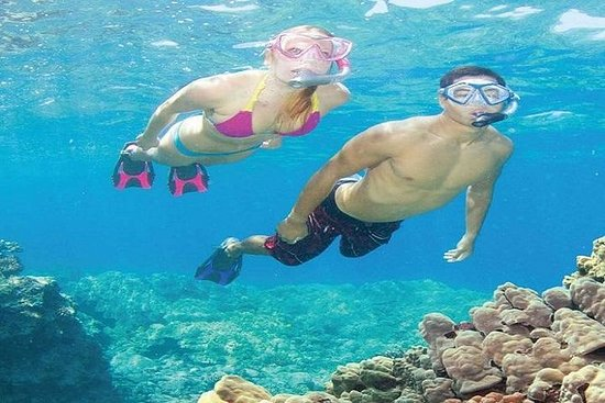 Koh Tao y Koh Nang Yuan Snorkeling...