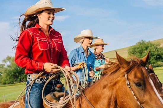 Equitación en el complejo Apaga...