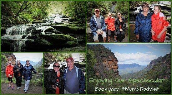 Голубые горы, Австралия: Bush walks, in our Backyard!