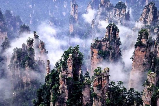 1 Day Zhangjiajie National Forest Park Tour