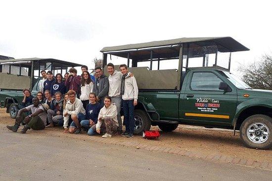Kruger Park Safari - Morning Safari