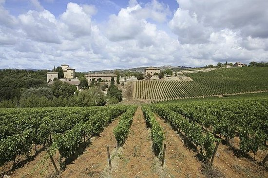 TUSCANY DAY TRIP: Wine, Beer and...