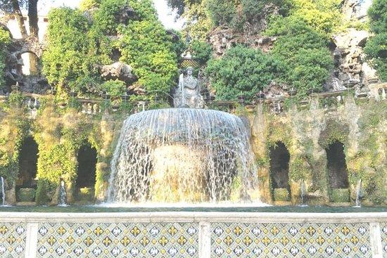 Excursión de un día a Roma en la Villa...