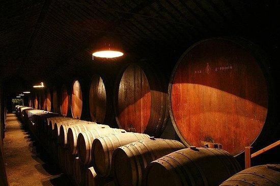 Wine Tour & Tasting Setubal Region
