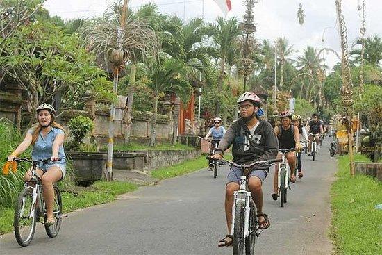 Tour à vélo à Bali