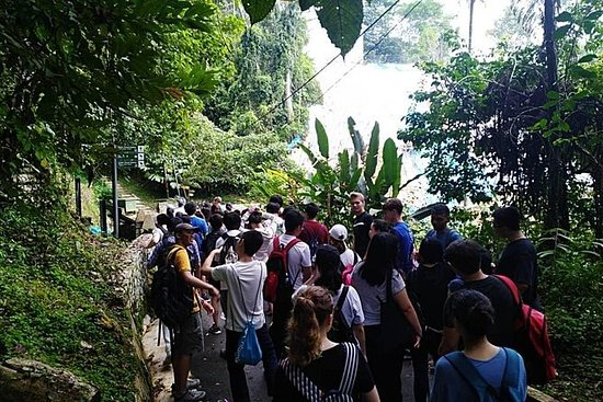 Penang: Gemas de medio día de Round...