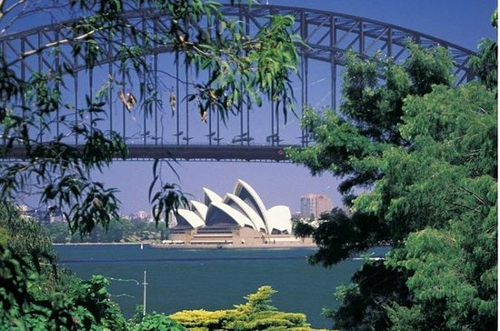Sydney Icons & Beaches Half Day Private Tour: Sydney Highlights Half Day Tour Private Tour