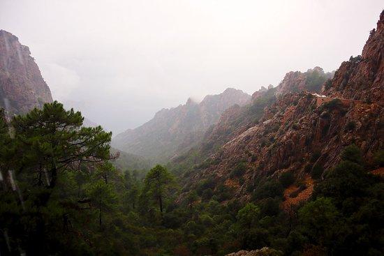 Blick ins Tal bei Regen