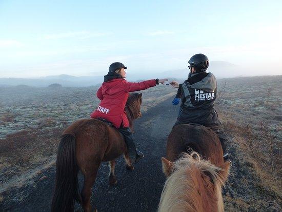 Icelandic Horseback Riding Tour from Reykjavik: Es werden Kameras und Handys überreicht zum Fotografieren (rot = Guide)