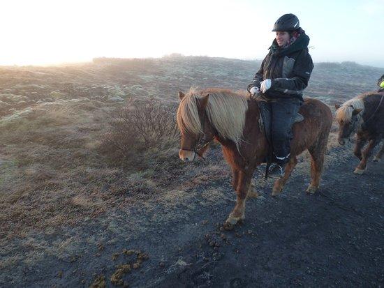 Icelandic Horseback Riding Tour from Reykjavik: Ich auf meinem Islandpferd.