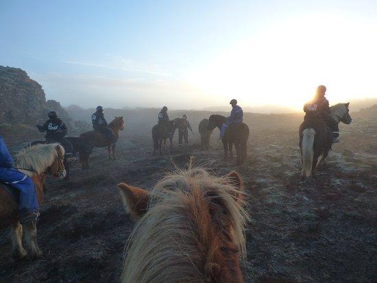 Icelandic Horseback Riding Tour from Reykjavik: Magisches isländisches Licht.