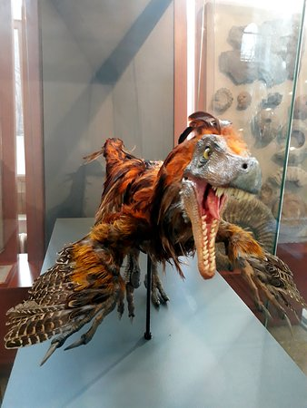 A Velociraptor with feathers