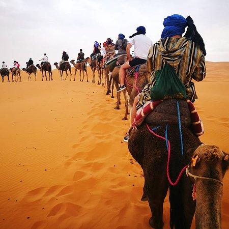 Your Desert Tours: Sahara Desert